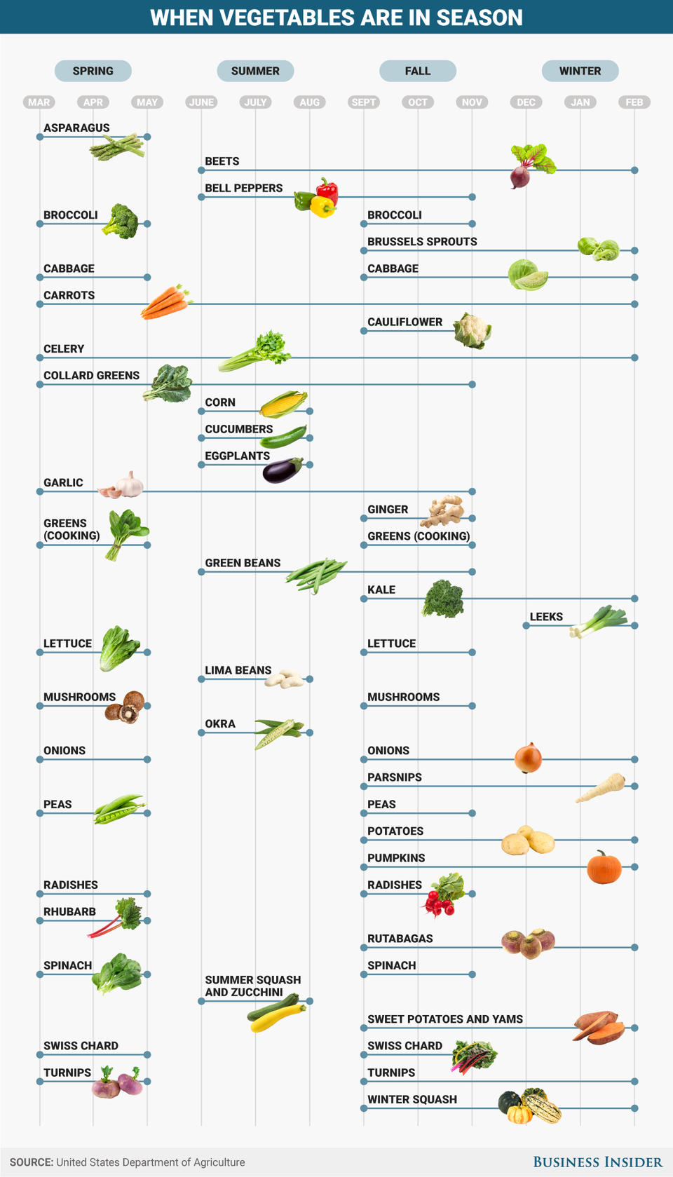 Infograph of when vegetables are in season